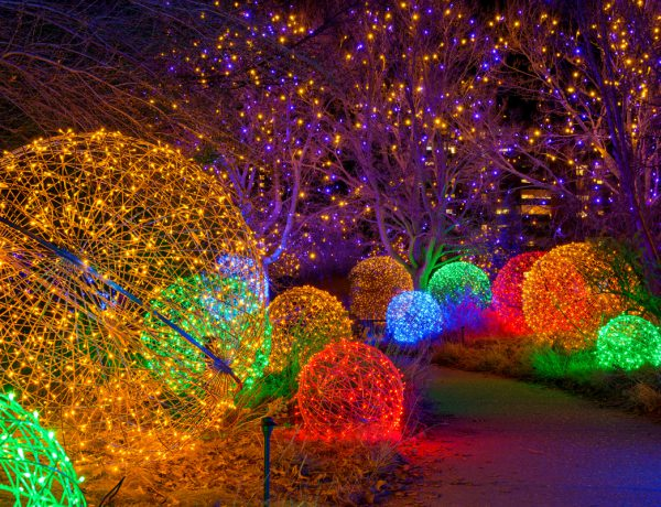 Holiday events and activites in Colorado 2021